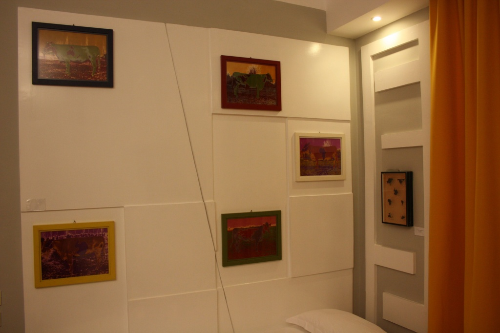 Art_Hotel_Gran_Paradiso_2011_Claudio_Parmiggiani_2.jpg
