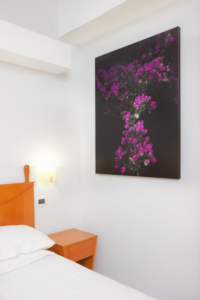 Art_Hotel_Gran_Paradiso_2012_102_Giovanni_Ozzola_2.jpg