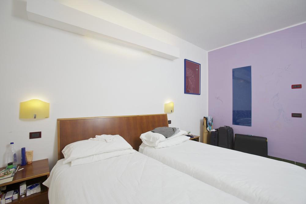Art_Hotel_Gran_Paradiso_2012_209_Maurizio_Elettrico_5.jpg
