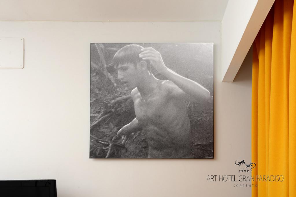 Art_Hotel_Gran_Paradiso_2013_105_Ana_Gloria_Salvia_5.jpg