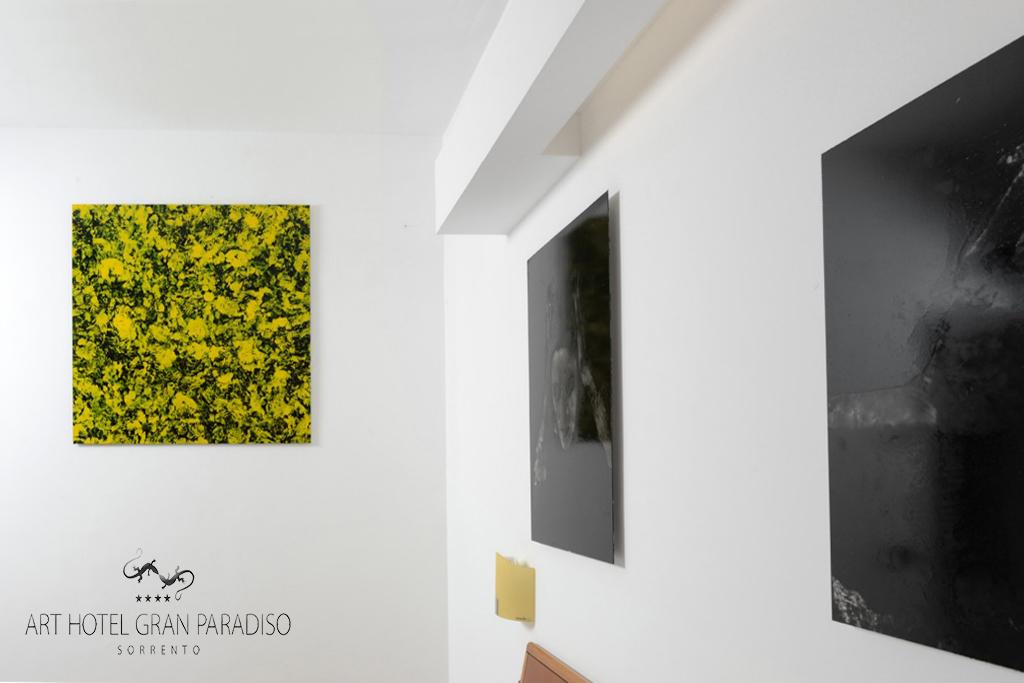 Art_Hotel_Gran_Paradiso_2013_108_Danilo_Ambrosino_4.jpg