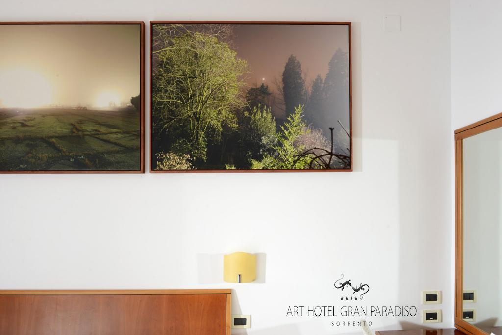 Art_Hotel_Gran_Paradiso_2013_122_Francesco_Candeloro_4.jpg