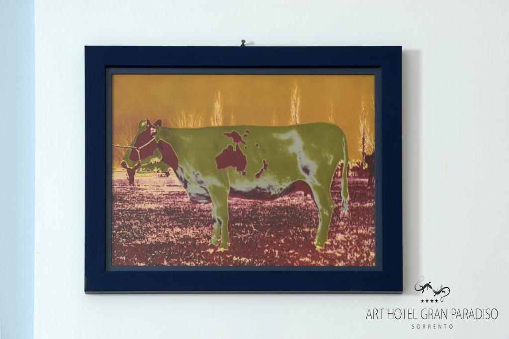 Art_Hotel_Gran_Paradiso_2013_127_Claudio_Parmiggiani_6.jpg