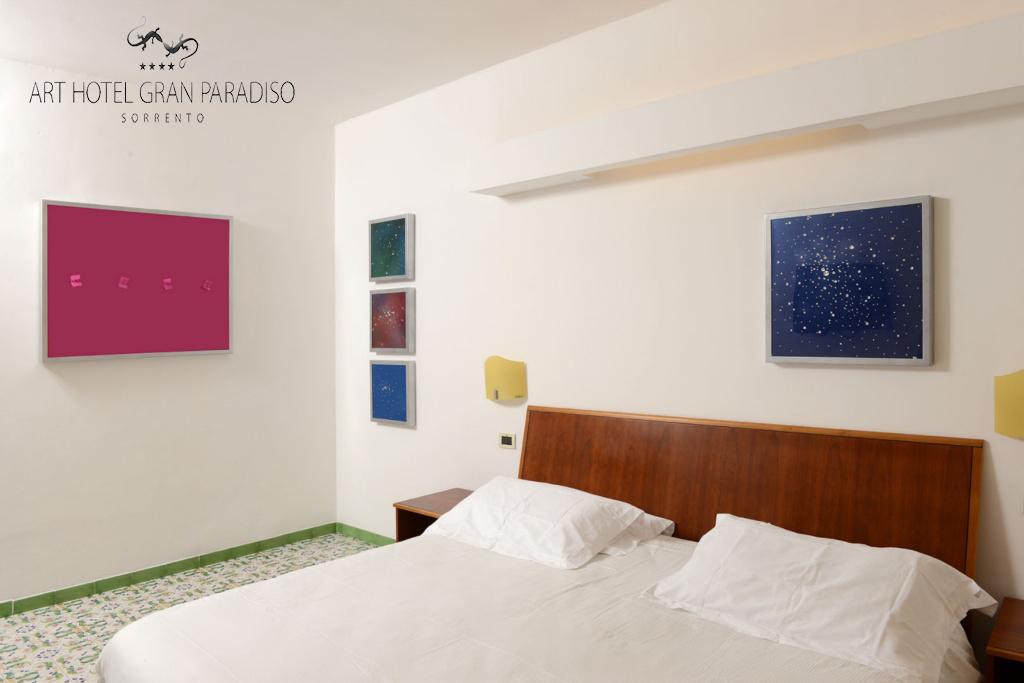 Art_Hotel_Gran_Paradiso_2013_206_Amedeo_Sanzone_1.jpg