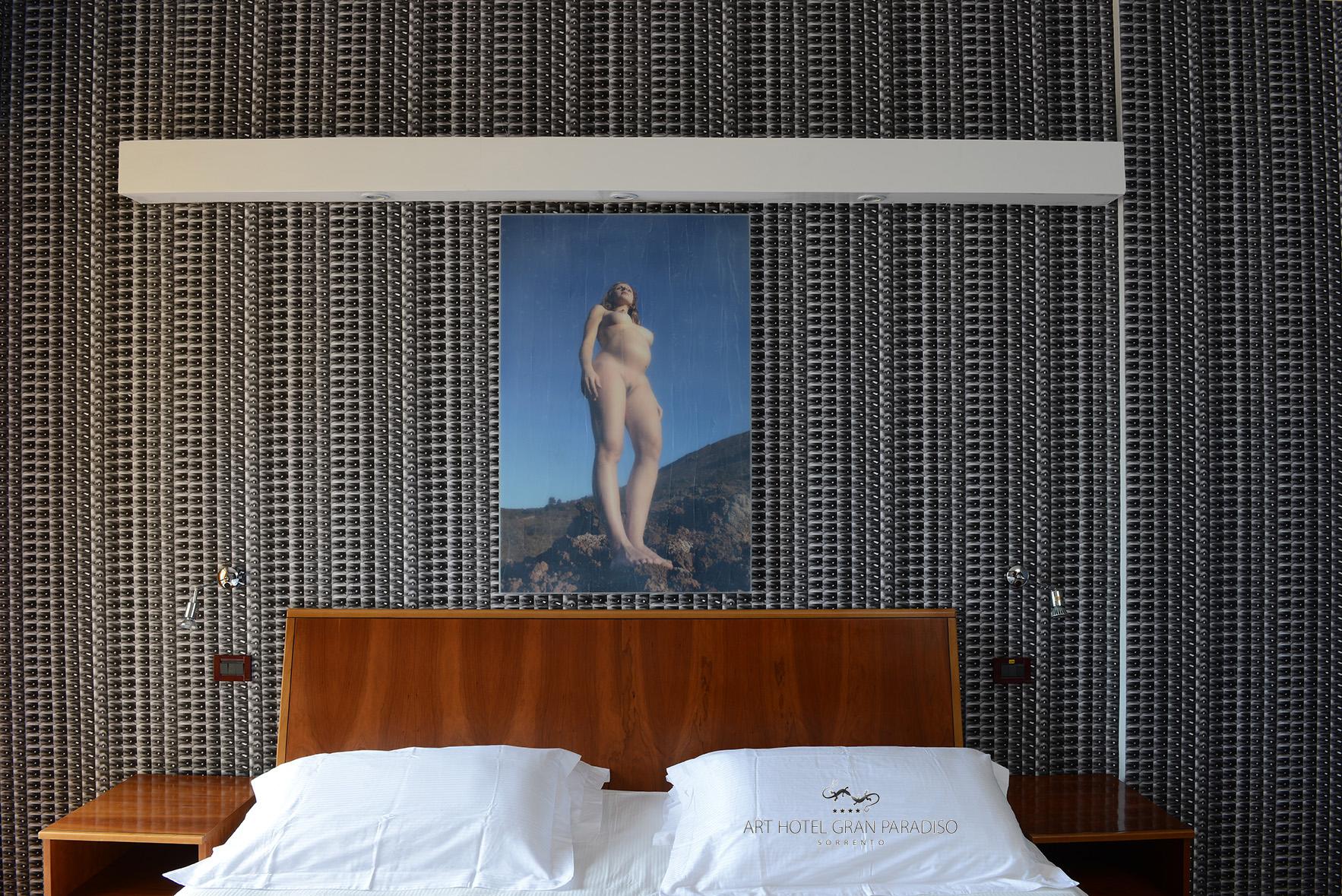 Art_Hotel_Gran_Paradiso_2013_101_Moio&Sivelli_3.jpg