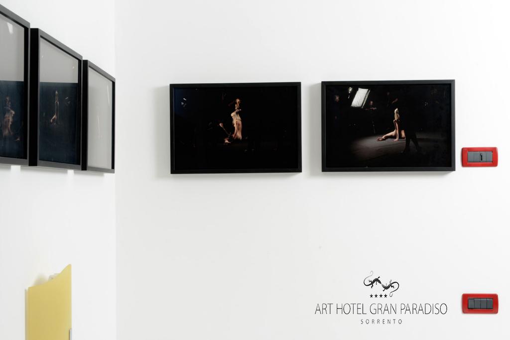 Art_Hotel_Gran_Paradiso_2013_211_Anee__Olofsson_3.jpg