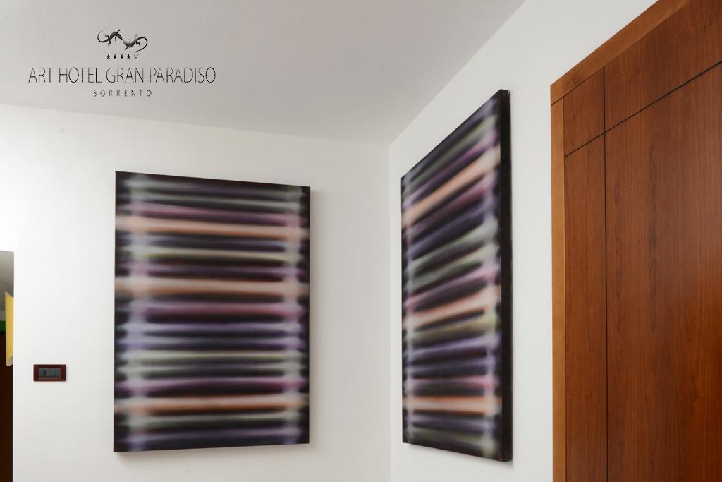 Art_Hotel_Gran_Paradiso_2013_221_Marco_Grimaldi_1.jpg